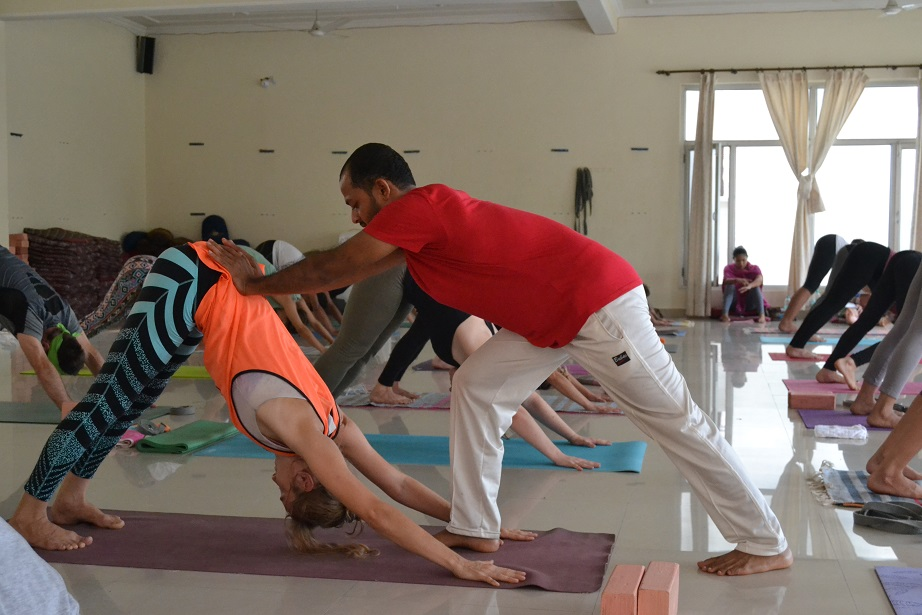 Yoga Teacher Training in Abu Dhabi
