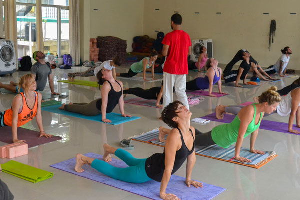 200 hour teacher training in India ahstanga yoga class first serie 1