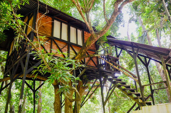 Yoga retreat in Colombia Treehouse in our yoga resort 1