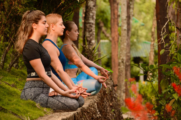 Yoga retreat in India meditation practice in Munnar